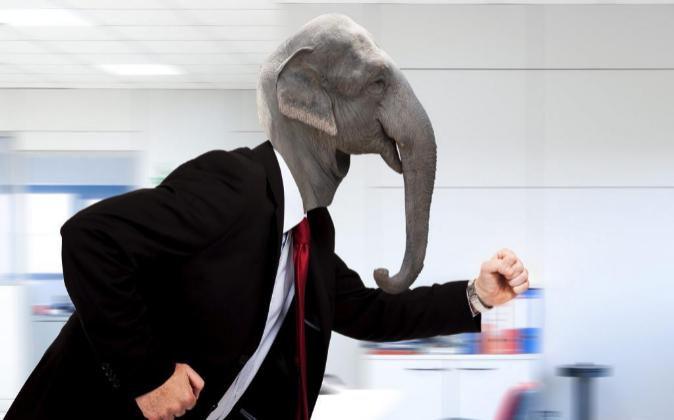 elefante en la oficina