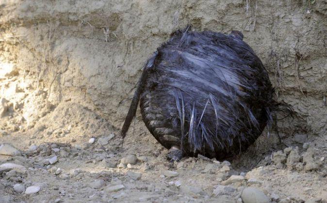 Uno de los objetos indeterminados hallados en Murcia y calificados...