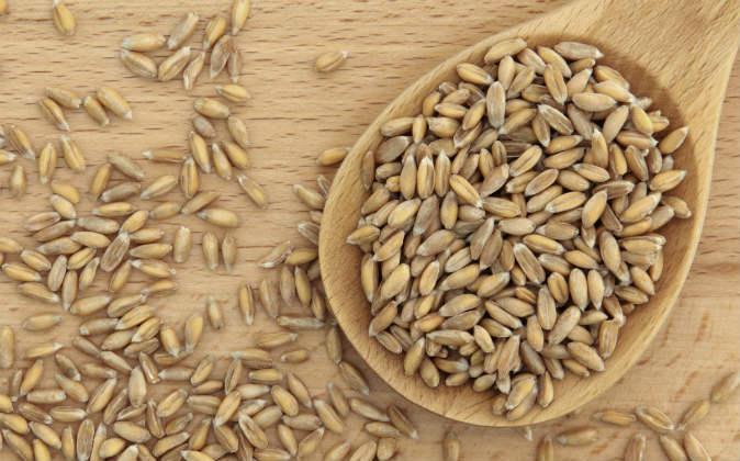 Harina de espelta propiedades nutricionales