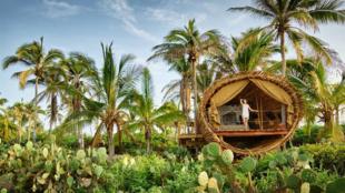 <strong>México</strong>. Arquitectura ecológica. Es lo que propone...
