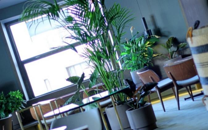 En la primera planta del Edificio Grassy, con interiorismo de Sandra...