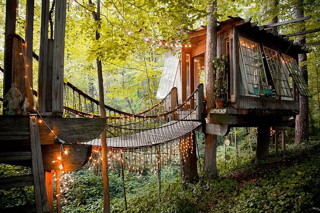 Vivir en un árbol nunca fue tan cómodo. El número uno de la lista...