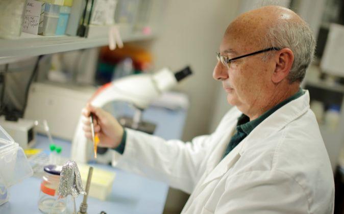 El microbiólogo español, Francisco Mojica.