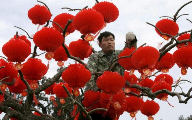 Un trabajador cuelga farolillos de papel de color en árbol de un...