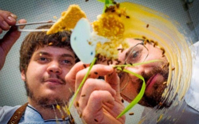 Segura y Chamorro apuestan por los cereales como elemento...