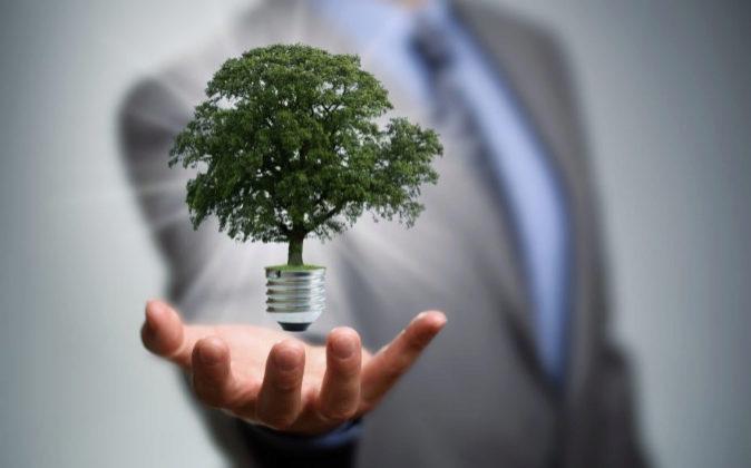Los programas de eficiencia energética permiten un importante ahorro...