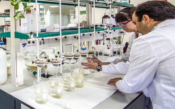 El laboratorio de Joselito, situado en Jerez de los Caballeros...