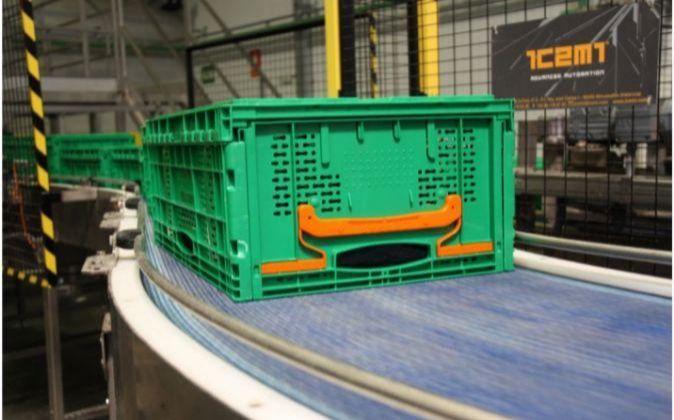 Sistema de envases y transporte de logifruit