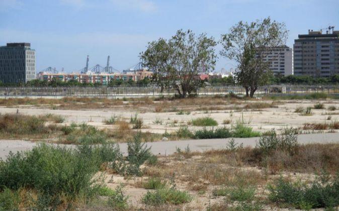 Imagen del estado actual de los terrenos del antiguo circuito urbano...