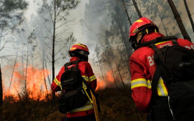 Bomberos portugueses tratan de extinguir un incendio forestal.