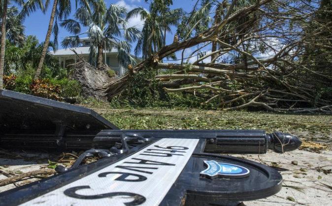 Vista de árboles caídos tras el paso del huracán Irma, en Naples...