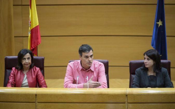 El secretario general del PSOE, Pedro Sánchez, preside en el Senado...