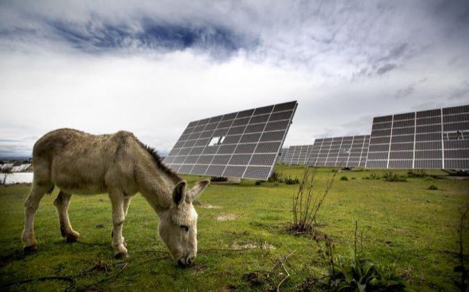 Paneles fotovoltaicos en Albuquerque.