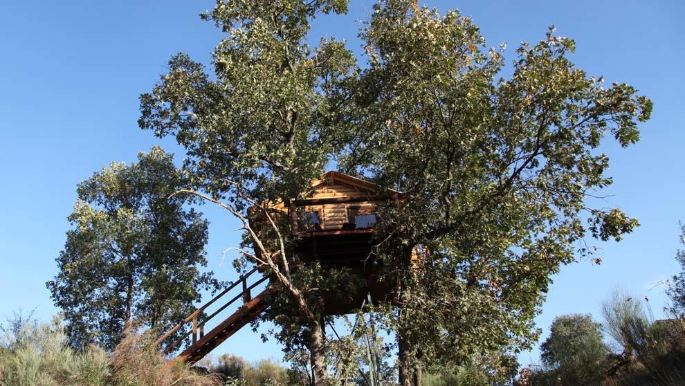 Finca cabañas árboles Cáceres