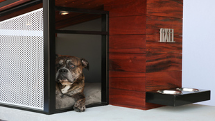 Casa para perros MDK9 Dog Haus Bauhaus Jax & Bones