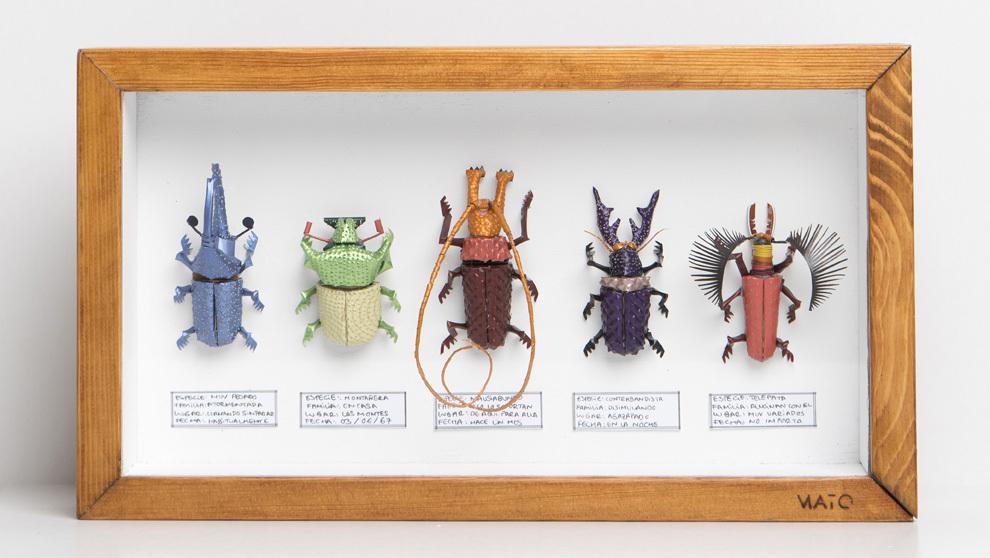 Escarabajos cápsulas Nespresso Jaime Mato