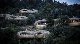Hotel gorilas
