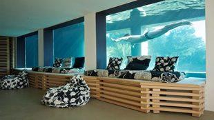 Vista de la piscina de la casa diseñada por el arquitecto Rudy...