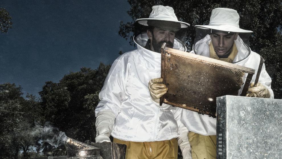 Fadrique Álvarez de Toledo, 49 años, y el apicultor Sergio Gil, 27...