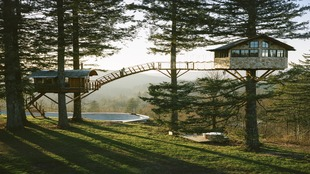 Cinder Cone Treehouse. Columbia.