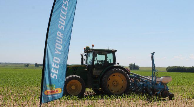 Este tractor siembra a distintas densidades, siguiendo las...