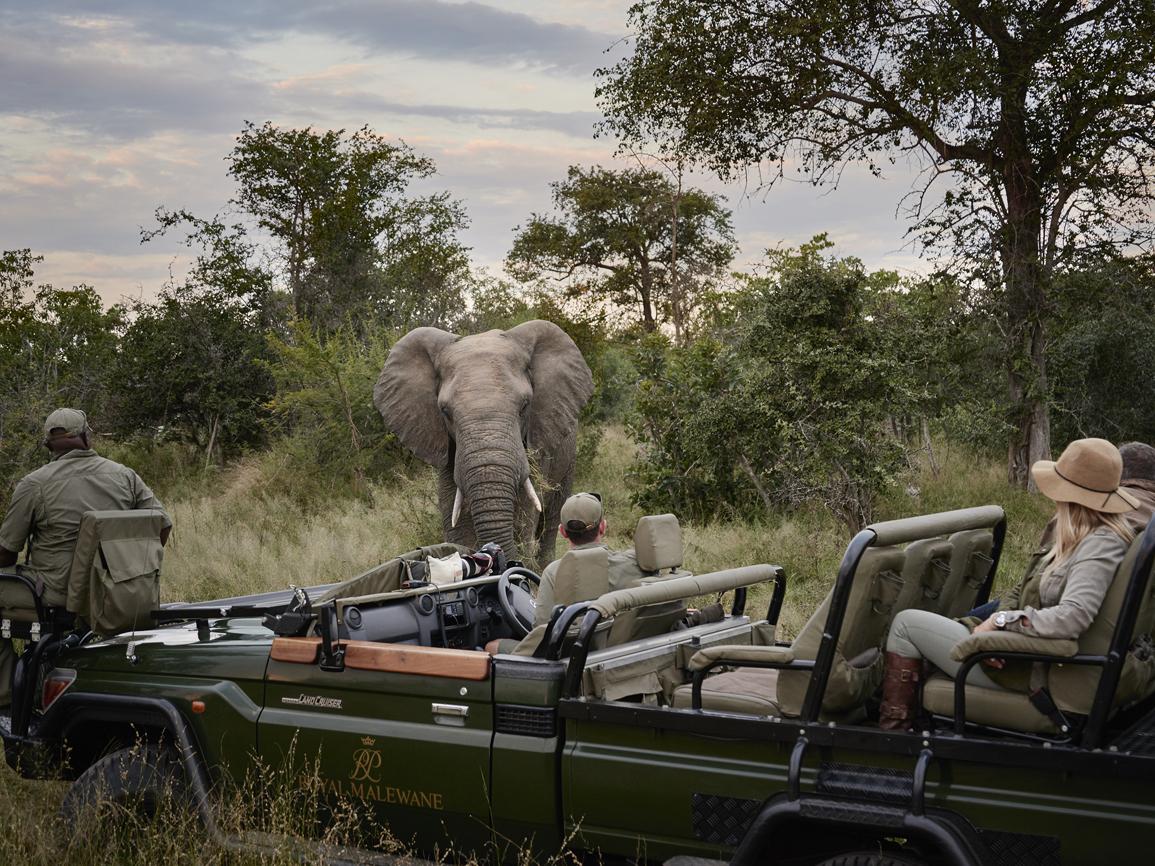 Uno de los más sensacionales campamentos safari de Sudáfrica, el