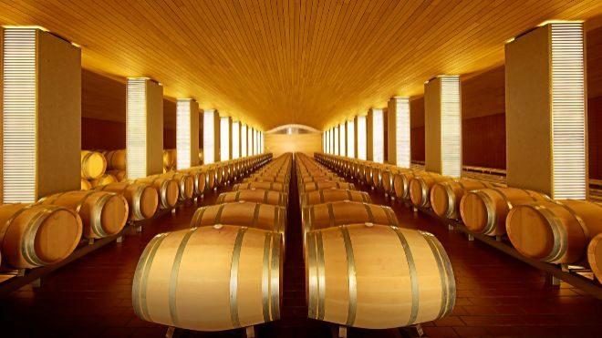 Vega Sicilia: diez años de esfuerzo y un vino Único | EXPANSION
