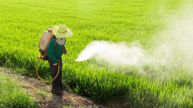 Tras fallo contra Monsanto, Bayer perdió ?11.000 millones