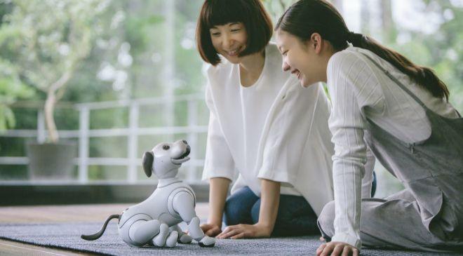 Aunque Sony paró la distribución de sus mascotas Aibo en 2016, este...