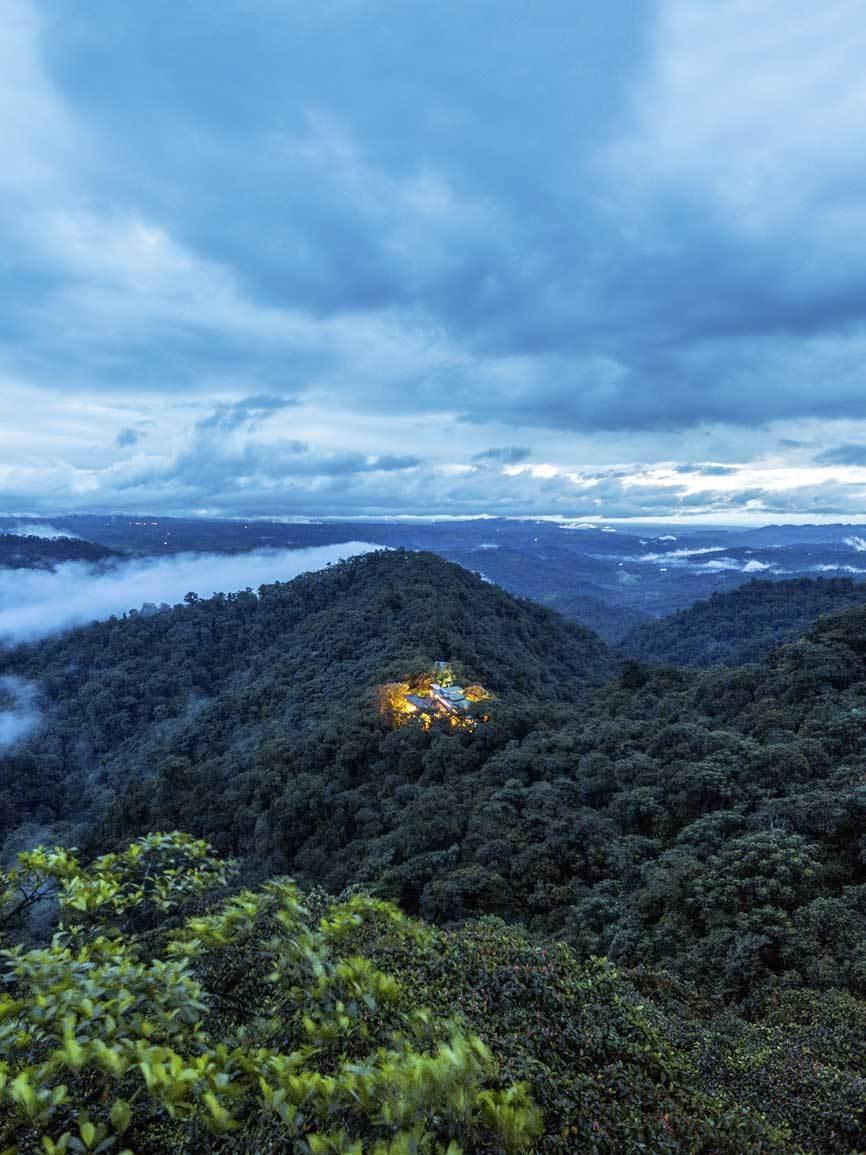 El lodge se edificó en un claro ya existente en el bosque lluvioso...