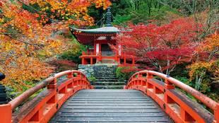 El país nipón es una de las joyas de la corona  de Catai desde los...