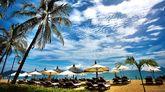 Imagen del proyecto Finca La Playa que Nyesa prepara en Costa Rica.