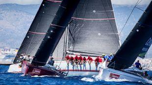 La flota de barcos de la clase Swan 50 durante una de las mangas de...