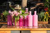 Por sexto año consecutivo Solán de Cabras lanza una edición en rosa...