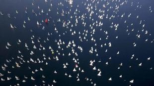 La flota de la Barcolana 2019, navegando parte del recorrido. |...