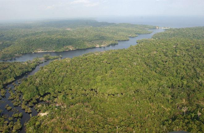 Vista aérea de la <HIT>Amazonia</HIT>.