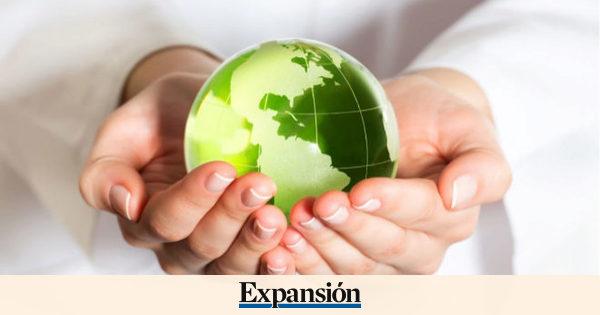 'Start up' que le ayudan a cuidar el medio ambiente