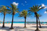 Situada al norte de la isla de Mallorca. Es famosa por sus playas...