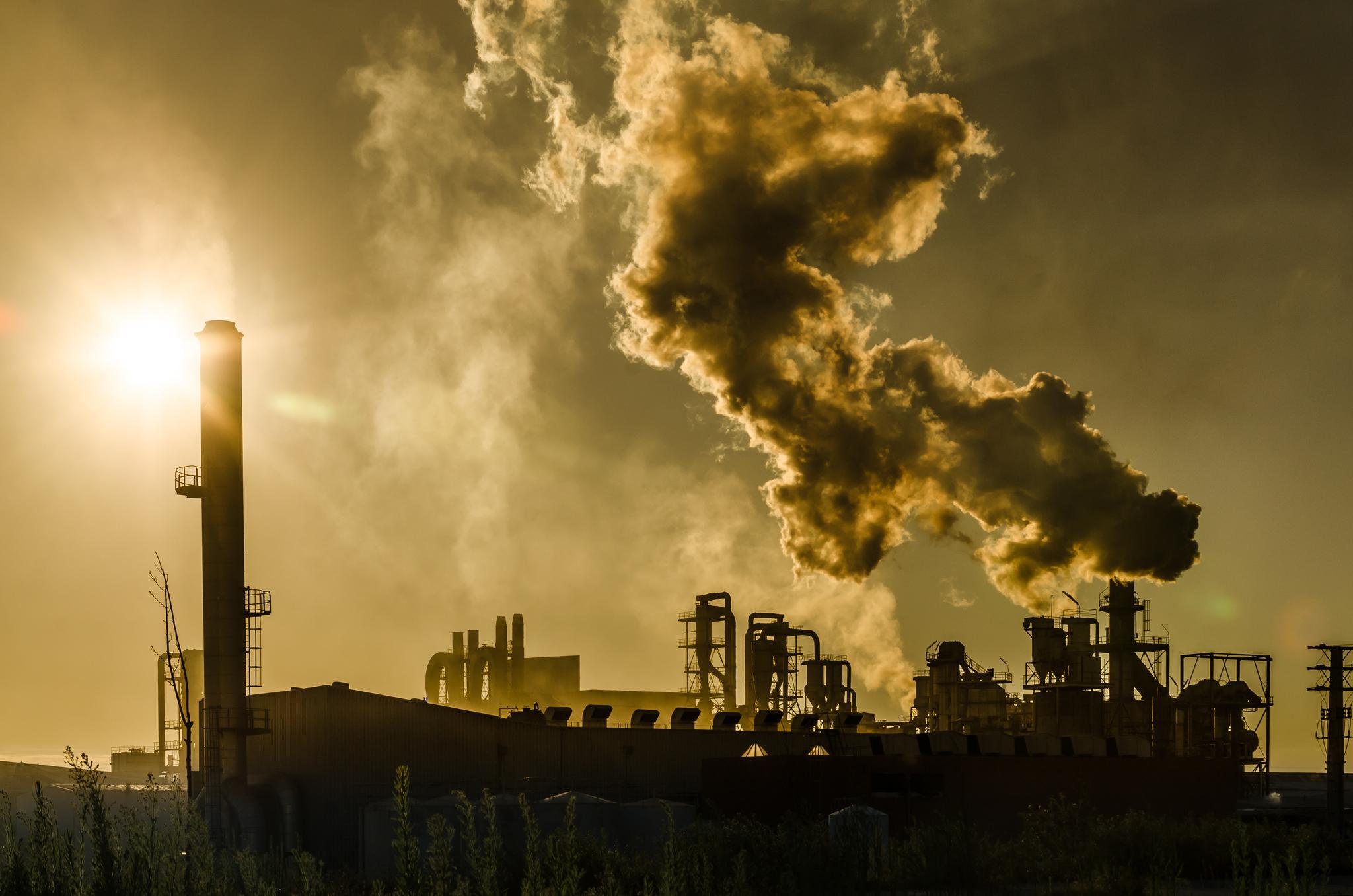 Un paso atrás en la senda de la descarbonización