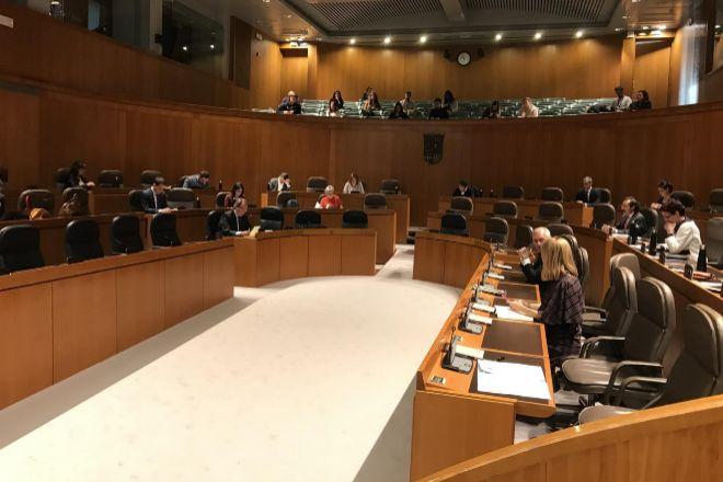 Las mayoría de los diputados de las Cortes de Aragón siguen el pleno por 'streaming'