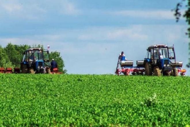 Los científicos y sanitarios, junto con los agricultores, están lógicamente en la lista de profesionales esenciales que define las actividades críticas durante la crisis del coronavirus que está cambiando el mercado laboral.