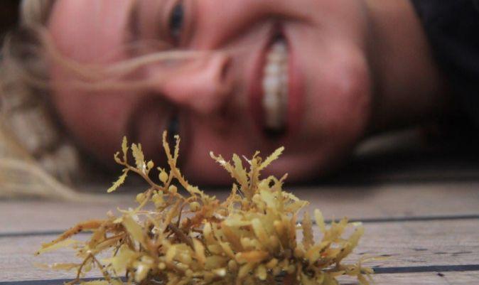 Anna, jodiéndome la foto de las muestras de algas que recojo para muestrear. | M.I.