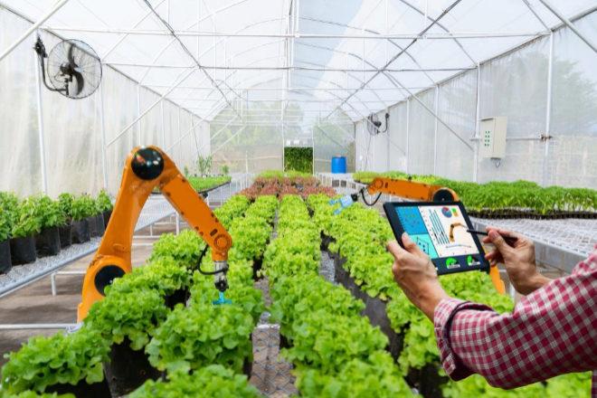 Cinco robots que salvarán las cadenas de suministros de alimentos en EEUU