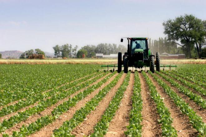 Las posiciones de agricultores son algunas de las más difíciles de cubrir.