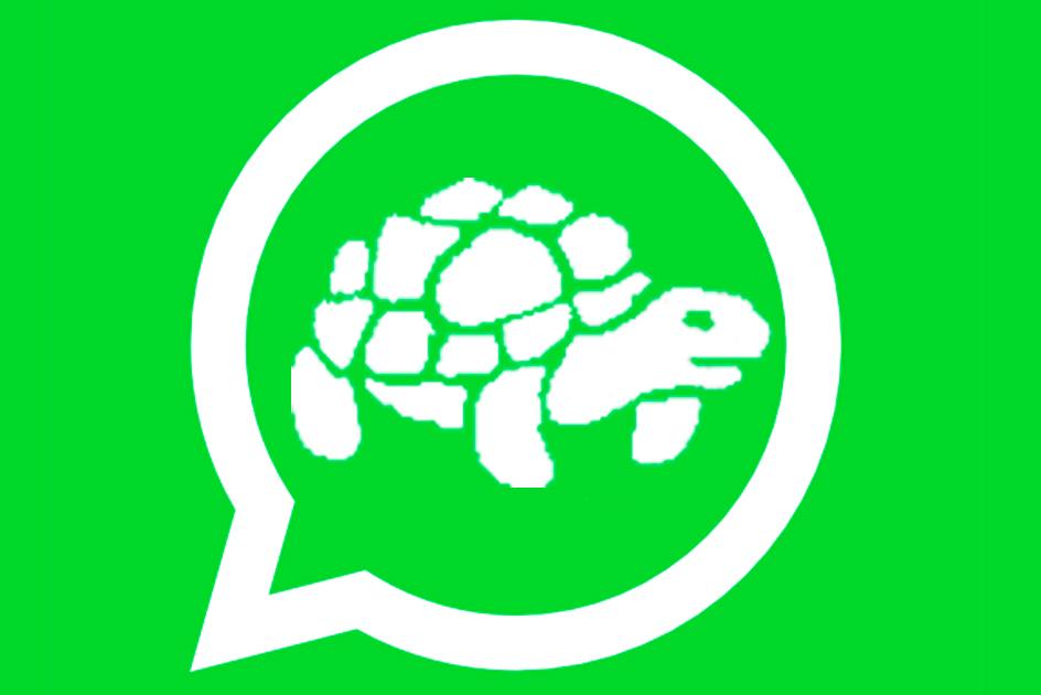 El truco para que WhatsApp te funcione más rápido