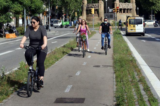 Los carriles bici, como el de la imagen (situado en el Passeig de Sant...