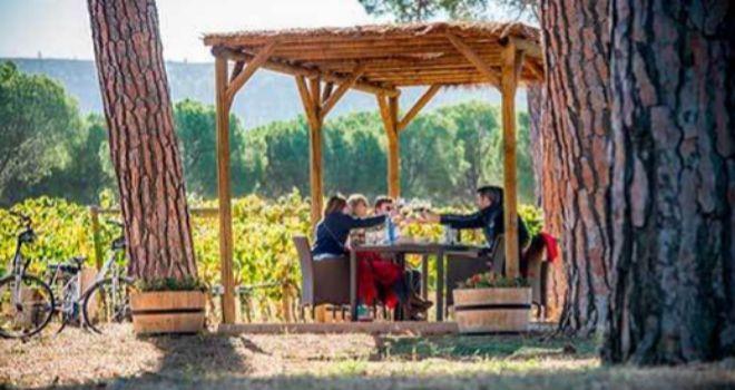 Un grupo disfrutando de los vinos de Villacreces y otros productor gourmet  tras un paseo en bici por sus viñedos.
