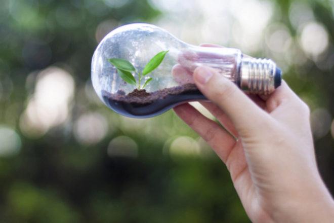 Los técnicos en ciencias ambientales y de protección son los profesionales que más ganan sin haber pasado por la Universidad.