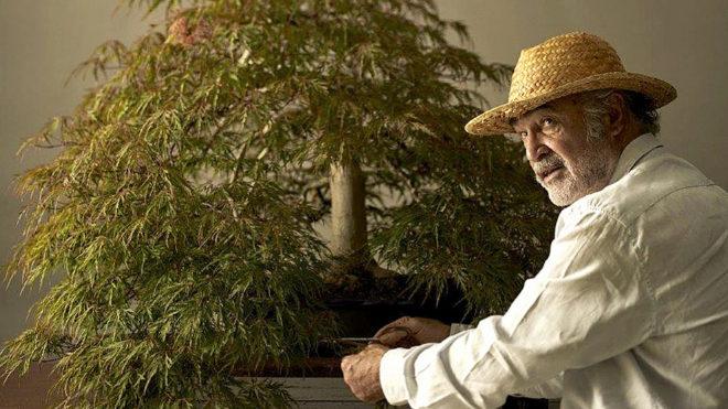 El paisajista, en su museo de bonsáis en Alcobendas (Madrid).