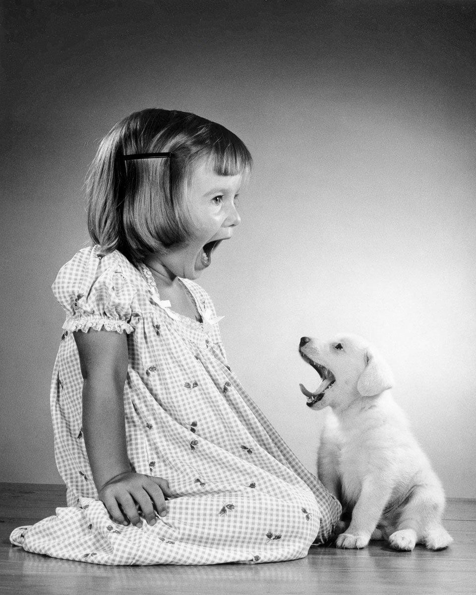 Un cachorro de raza mixta con Maria, la hija del fotógrafo Walter...
